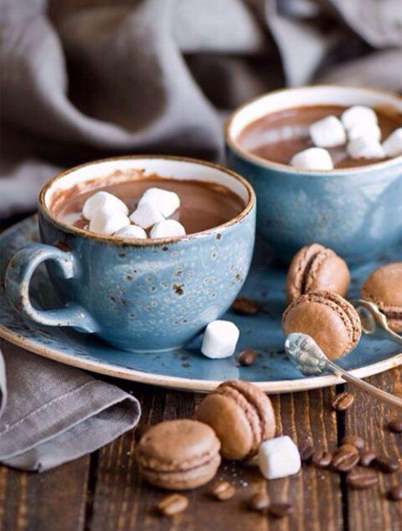 Noel chocolat chat