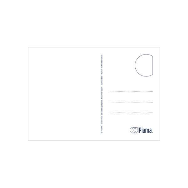 verso carte postale oursin méditerranée