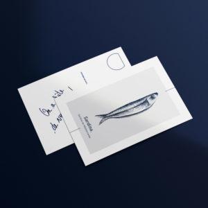 mock up de carte postale sardine
