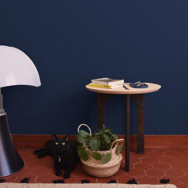 guéridon timo dans un salon avec plante, livre et chat